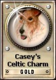 Casey's Celtic Charm Gold Award